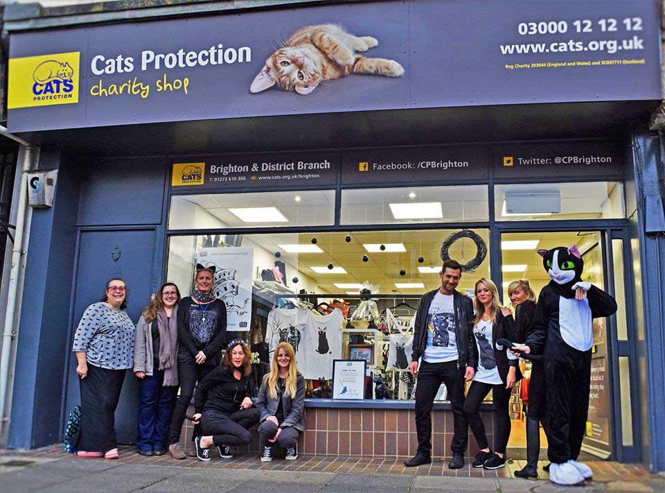 Cats Protection Brighton Charity Shop Brighton